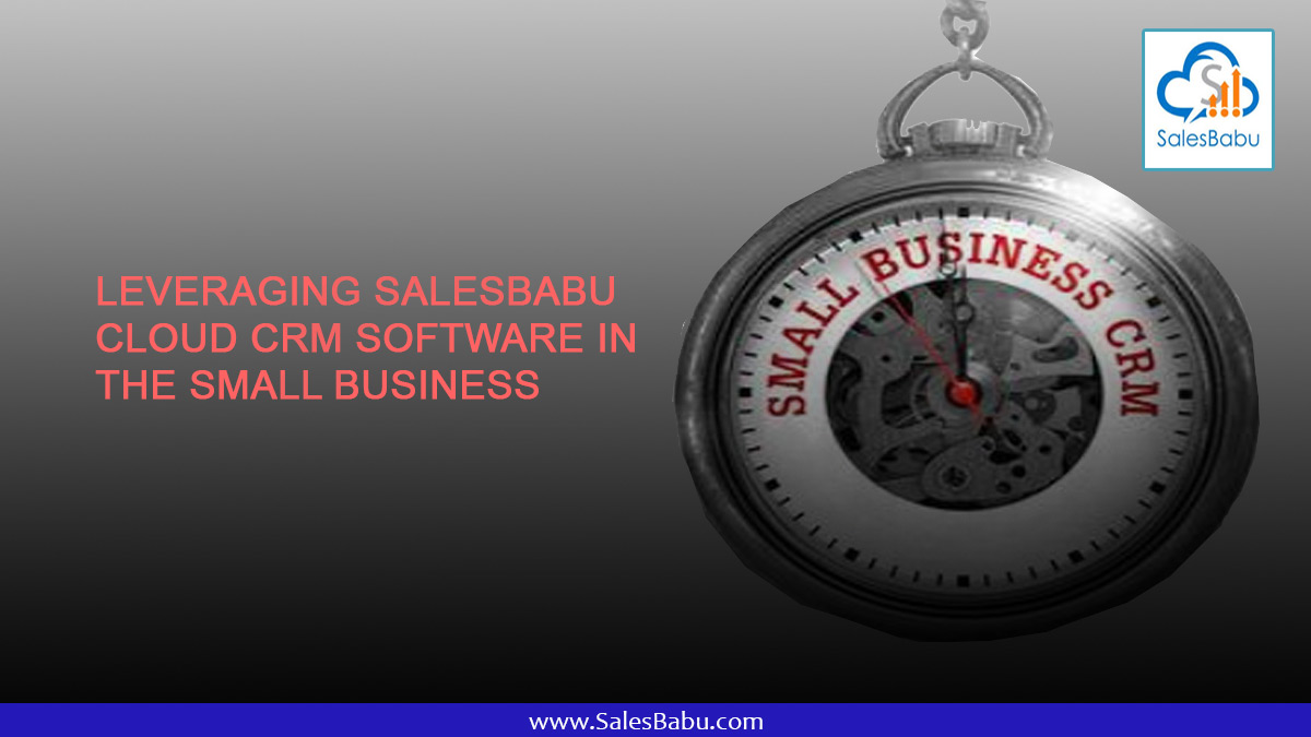 Leveraging SalesBabu Cloud CRM Software in the Small Business : SalesBabu.com
