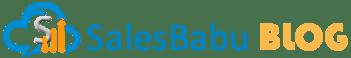 SalesBabu Business Solutions Pvt. Ltd. , INDIA ·