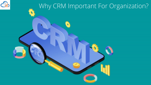 How much important is the Sales CRM software in the Business