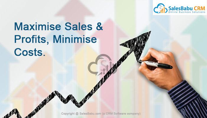 Maximise Sales & Profits, Minimise Costs : SalesBabu.com