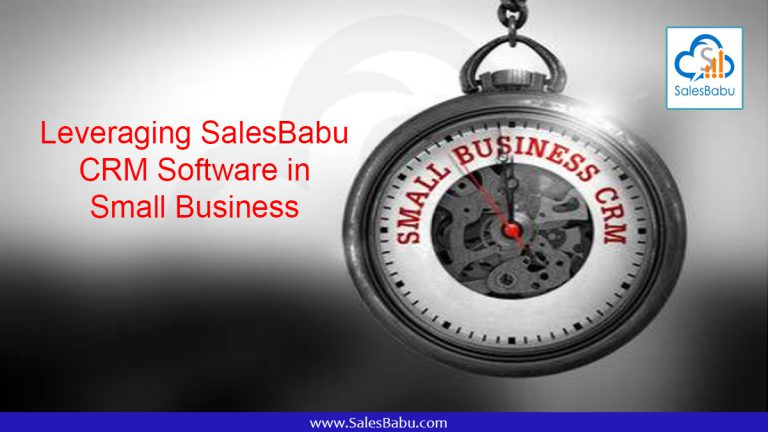Leveraging SalesBabu CRM Software in the Small Business : SalesBabu.com
