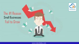 The #1 Reason Small Businesses Fail to Grow : SalesBabu.com