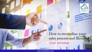 How to streamline your sales process and increase your revenue : SalesBabu.com