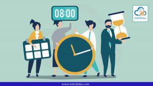 Identify the timelines : SalesBabu.com