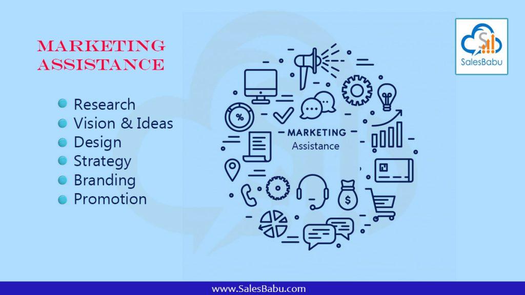 Marketing assistance : SalsBabu.com