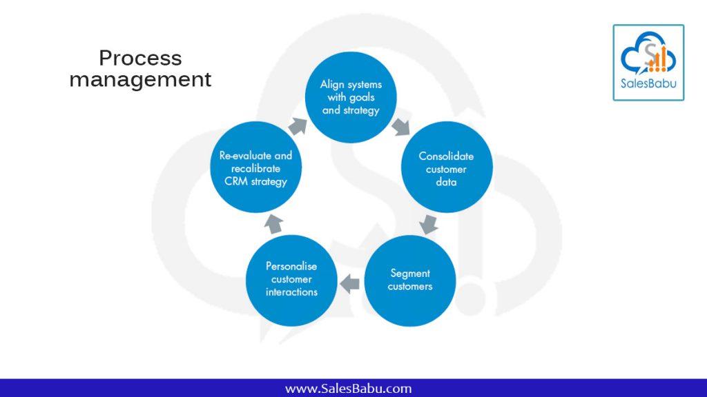 Process management : SalesBabu.com