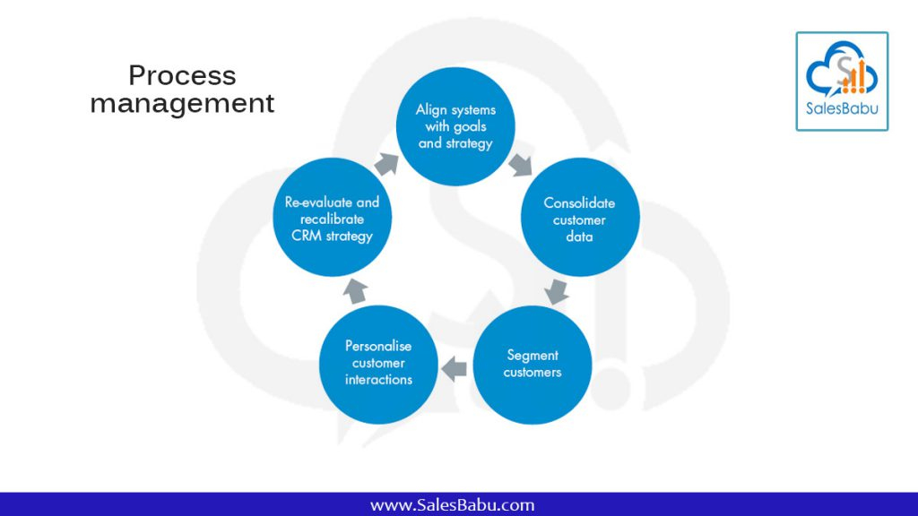 Process management : SalesBabu.com