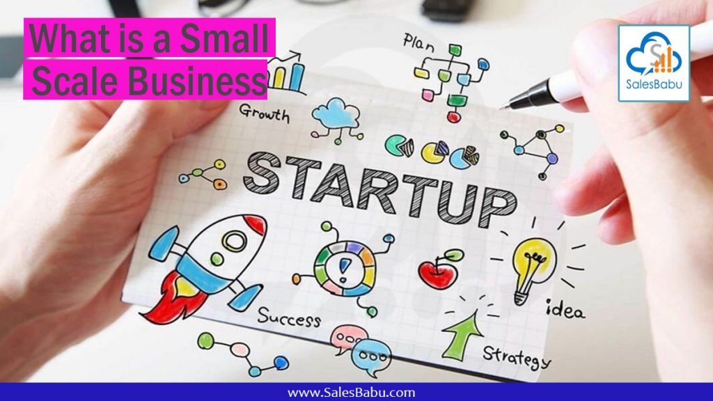 What is a Small Scale Business : SalesBabu.com