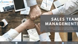 Sales Team Management